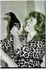 C2012007 bygone 1987 Andy the crow 2235