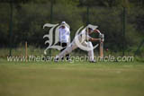 CS1719130 dcloney mill cricket alan harland 2