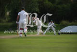 CS1833173 dcloney mills cricket