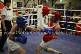 newry boxing 2